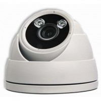 AVT Telecamera Dome IP PoE IR HD 2MP Soffitto/Parete IP66 AVM420U